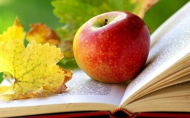 Когда правильно есть фрукты и ягоды?