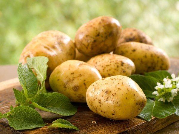 Молодой картофель - рецепты красоты